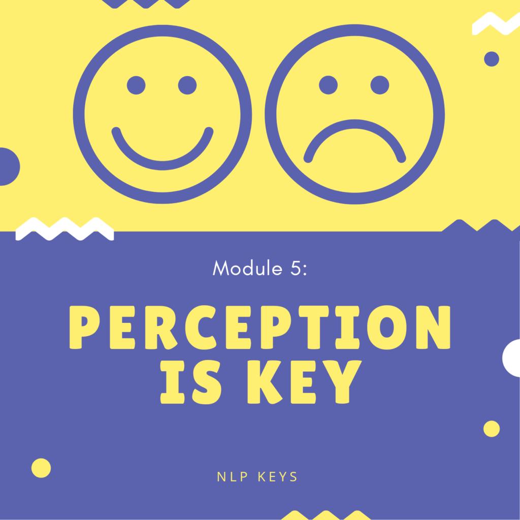 Module 5 - Perception is Key